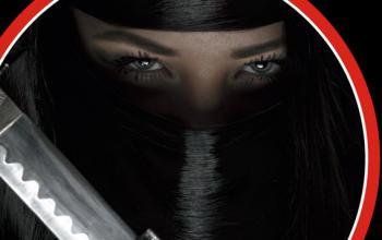 Il Professionista: Ninja Mission