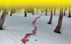 Sette delitti sotto la neve