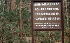 La Foresta dei Suicidi