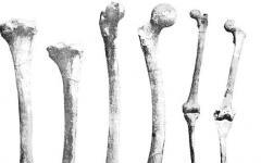 Sherlock Holmes e il caso delle ossa sacre